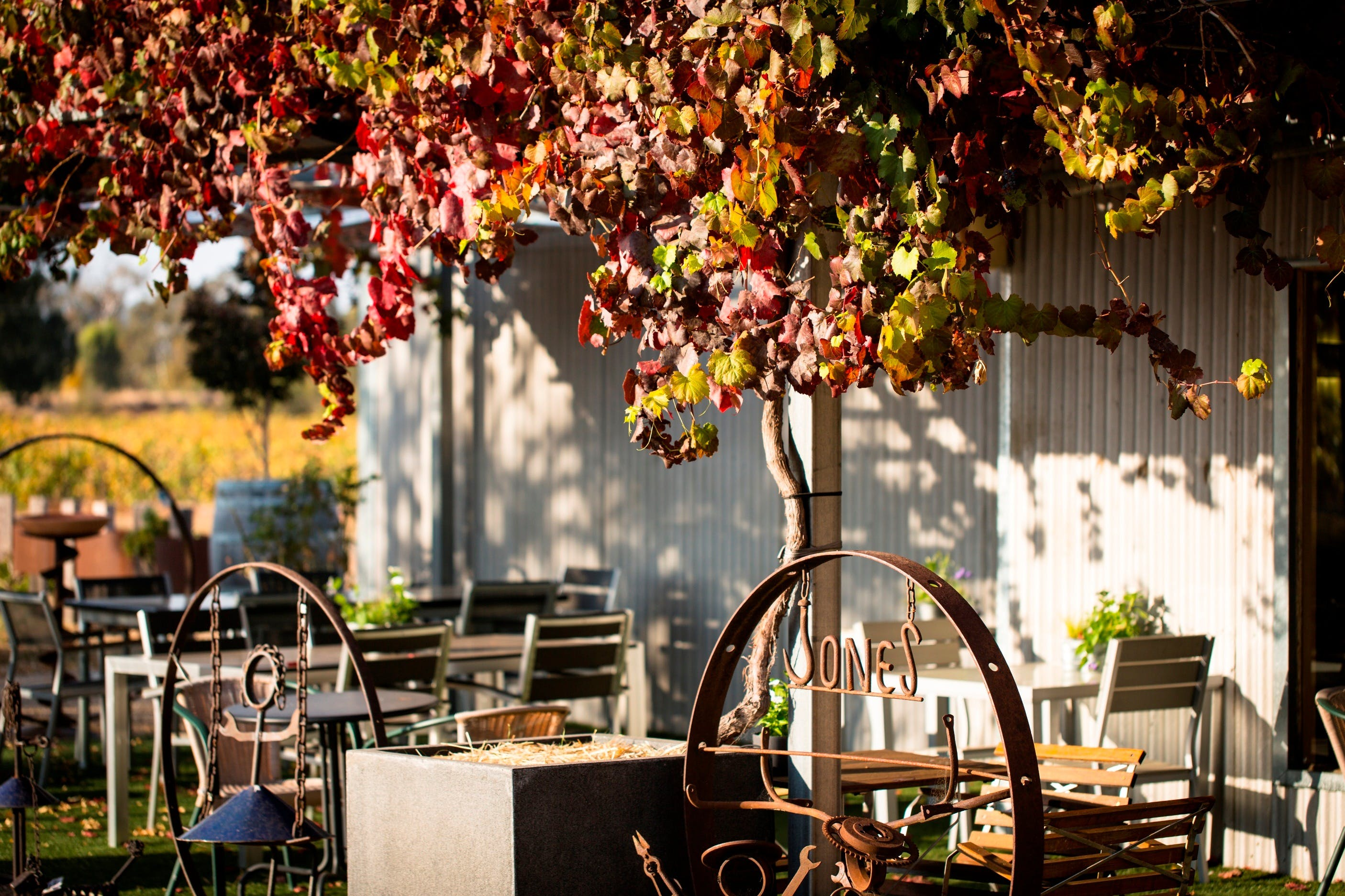 Jones Winery  Vineyard - Food Delivery Shop