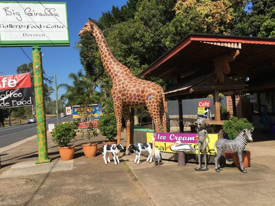 The Big Giraffe - Food Delivery Shop